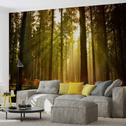 Easy to apply green forest wallpaper